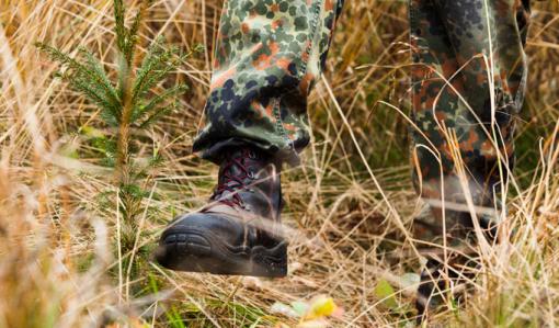 Lähikuva maastokengistä, jotka polkevat ruskeaa heinää matalaksi taimen ympäriltä.