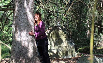 Terveyttä metsästä