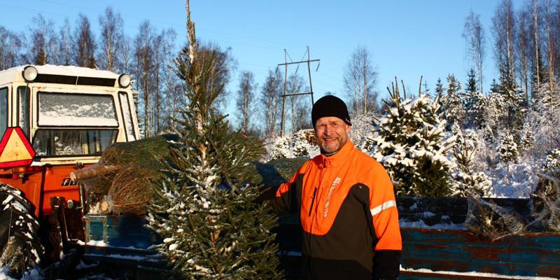 Antti Heikkilä joulukuusen kanssa talvella. Taustalla on pieni traktori ja sähkölinja.