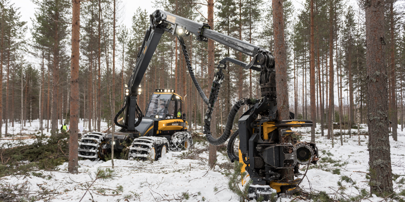 Hakkuukone tekee talvisessa metsässä harvennushakkuuta.