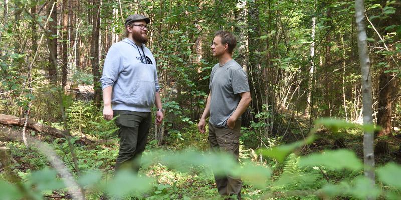 Metsänomistaja Tero Ahava ja luonnonhoidon asiantuntija Jukka Ruutiainen keskustelevat pähkinäpensaslehdossa. Heidän ympärillään on vihreää ja rehevää kasvillisuutta.
