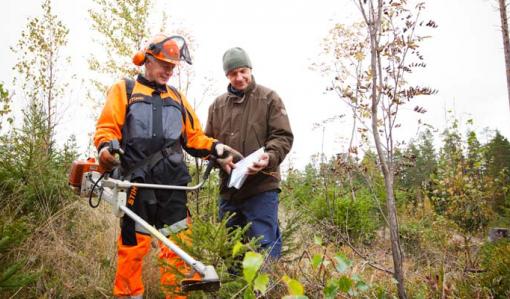 Kuvassa metsuri ja metsänomistaja katsovat yhdessä omavalvontalomaketta syksyisessä metsässä. Metsurilla on kädessään raivaussaha.