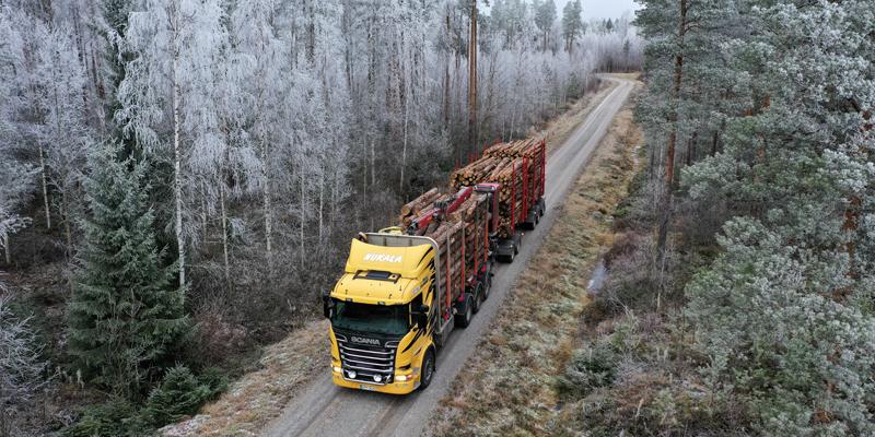 Tukkirekka kuvattuna ylhäältäpäin. Rekassa on keltainen ohjaamo ja se on täydessä kuormassa. Metsätien ympärillä on kuuraisia puita.