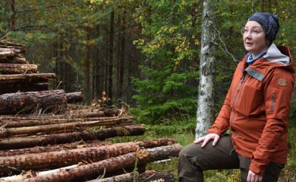 Marika Hänninen energiapuukasan vieressä.