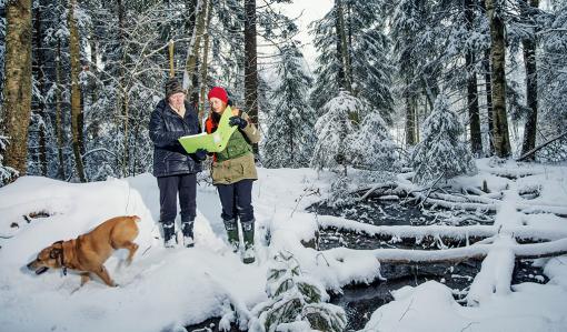 Metsänomistaja Virpi Saarela ja metsäasiantuntija Minna Lautala katsovat yhdessä metsäsuunnitelmaa talvisessa metsässä. Metsänomistajan koira juoksee innoissaan lumessa. Oikealla kuvassa on lähde, jonka ylle on kaatunut muutamia puita.