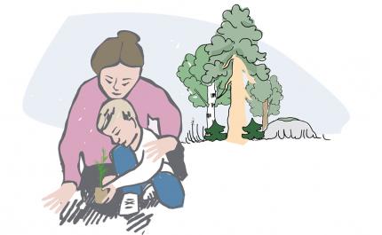 Kohti tavoitteiden mukaista metsänhoitoa