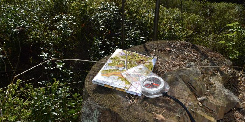Kartta ja kompassi kannon päällä