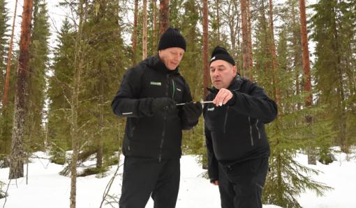 Metsänhoidon johtava asiantuntija Markku Remes ja metsänomistaja Ari Sirviö katselevat yhdessä puun lustonäytettä, joka on otettu tuhkalannoitetusta metsästä.