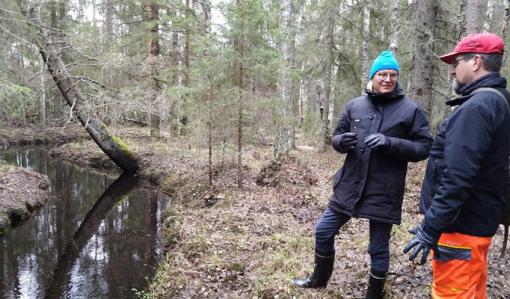 Metsänomistaja Mauno Soronen ja metsän- ja luonnonhoidon asiakasneuvoja Ari Karjalainen keskustelevat metsäpalstalla. Vieressä vasemmalla virtaa luonnontilainen puro.