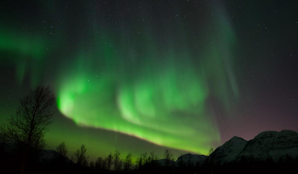 Vihreät revontulet pohjoisella taivaalla