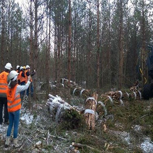 @metsakeskus: Portugalin hallinnon ja metsäalan edustajat tutustumassa energiapuunkorjuuseen. Vierailun isäntinä @mmm.fi ja @metsakeskus. #energiapuu #metsänhoito