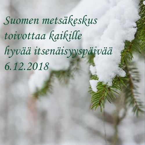 @metsakeskus: 🌲💚🇫🇮 Vi önskar er alla en god #självständighetsdag. #itsenäisyyspäivä