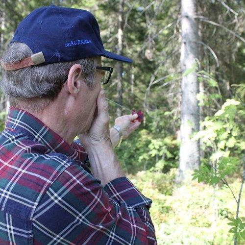 @metsakeskus: Osaatko arvioida metsässäsi kasvavan puuston kuutiomäärää tai sitä, onko taimikon raivaus onnistunut? 🌳 Metsänomistajan on hyvä osata mitata ainakin taimikon tiheys, puun pituus ja pohjapinta-ala. Mittaustaidot helpottavat esimerkiksi metsänhoitotöiden laadun arviointia ja mittaamiseen riittävät yksinkertaiset varusteet. Vinkit oman metsän mittaamiseen voit lukea Metsään-lehdestä, metsaan-lehti.fi.  #metsänmittaus #metsänhoito #metsänomistaja