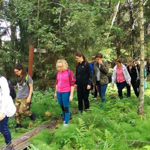 @metsakeskus: Maa- ja metsätalousministeriön hallinnonalan viestijät vierailivat eilen Luonnonvarakeskuksen hallinnoimassa Solbölen tutkimusmetsässä Raaseporissa.  Kuulimme suomalaisten puiden geenipankista, ihmettelimme jättituijia ja kanadanhemlokkeja ja häikäistyimme yli 80-vuotiaassa lehmuslehdossa. 🌳🌱🌲💚 #solböle #tutkimusmetsä #metsäntutkimus #metsänhoito #luonnonhoito