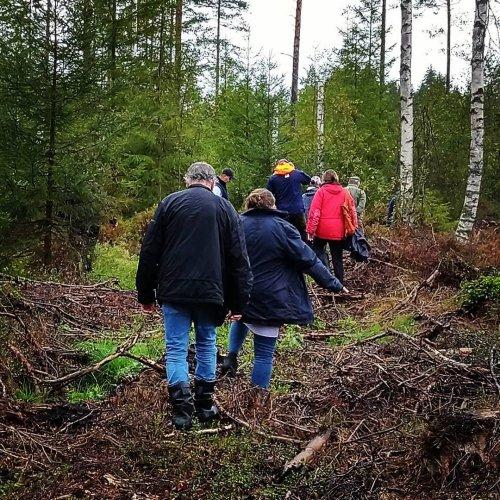 @metsakeskus: Parempaa luonnonhoitoa helposti ja kustannustehokkaasti. Metsänomistajat oppivat uutta pökkelöistä, riistatiheiköistä ja säästöpuista Laatuloikka luonnonhoitoon-lenkillä Kemiönsaaressa lauantaina. Tervetuloa mukaan tuleville lenkeille, lisätietoa metsäkeskus.fi/tapahtumat.  Bättre naturhänsyn enkelt och kostnadseffektivt. Skogsägare kollade in högstubbar, viltbuskage och naturvårdsträd på skogsvandring i Kimitoön. Välkommen med på kommande vandringar, läs mer på skogscentralen.fi/evenemang.  #monimetsä #naturhänsyn #luonnonhoito #högstubbar #pökkelö #naturvårdsträd #säästöpuu
