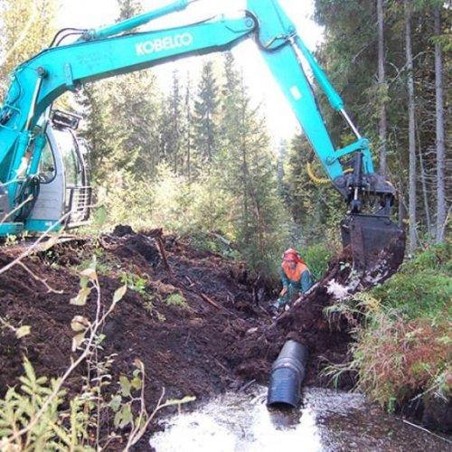 Metsäkeskuksen vuoden kolmas luonnonhoitohankkeiden haku on nyt auki.   🌊 Syksyn hankehaussa on mukana useita vesiensuo...