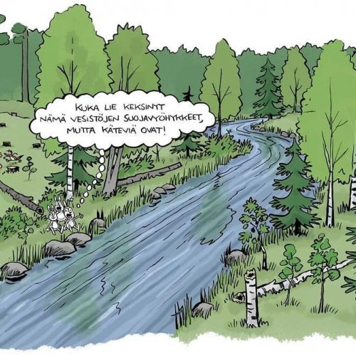 Reposted from @monimetsa   Jätetään vesien varsille suojavyöhykkeet! Suojavyöhyke on pienveden tai vesistön rantakaistal...