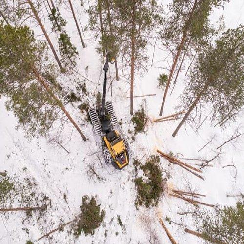 Metsäkeskus on saanut valmiiksi metsien inventoinnin ensimmäisen kierroksen. Työ aloitettiin 2010-luvun alussa, ja tiedo...