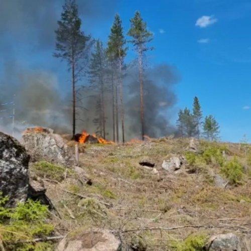 🌲 Luumäen Kannuskoskella starttasi tänään Metsäkeskuksen Kulotuskoulu-hankkeen ja Tornatorin metsänhoidollinen kulotus....