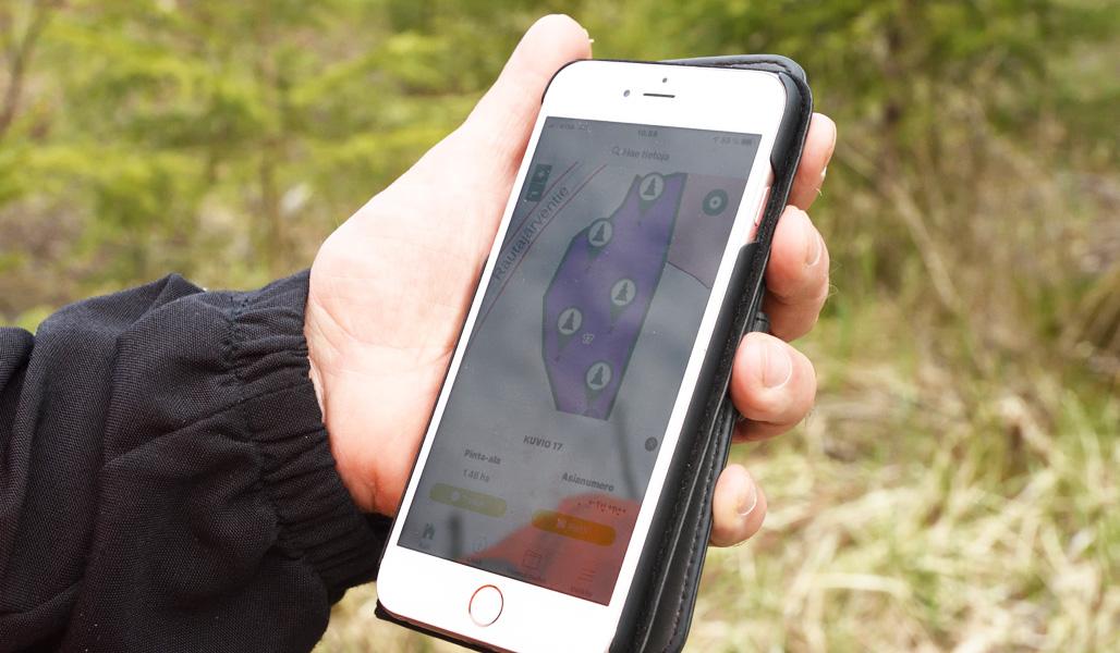 Lähikuva puhelimesta, jossa on avoinna Laatumetsä-sovellus ja koealamittauksen tiedot.